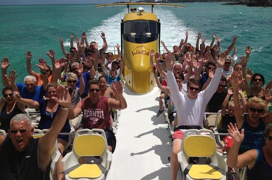 Wildcat Boat Adventure Blast in Bermuda