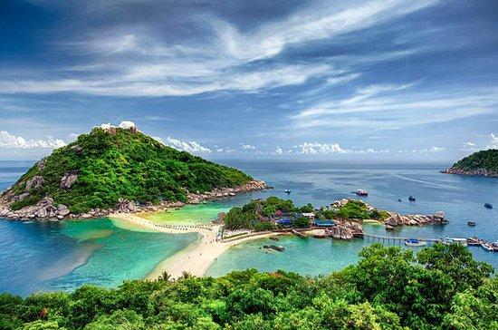 Ganztagesausflug nach Koh Tao und Koh...