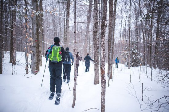 Excursion de ski Hok à Québec