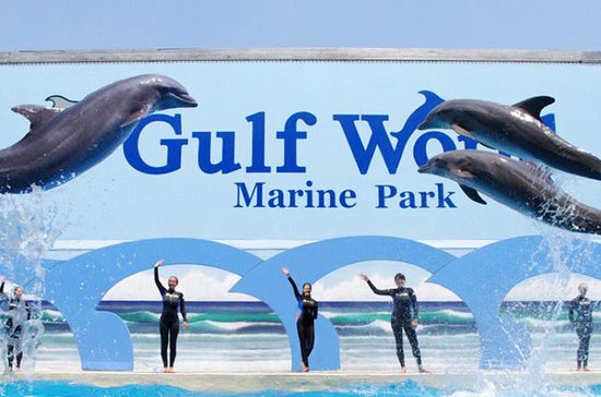 Gulf World Marine Park General...