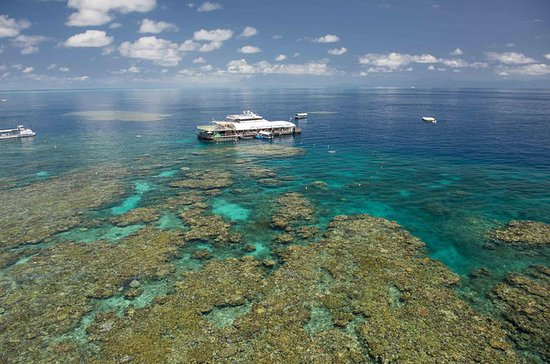 Great Barrier Reef Full-Day Snorkeling Cruise from Cairns