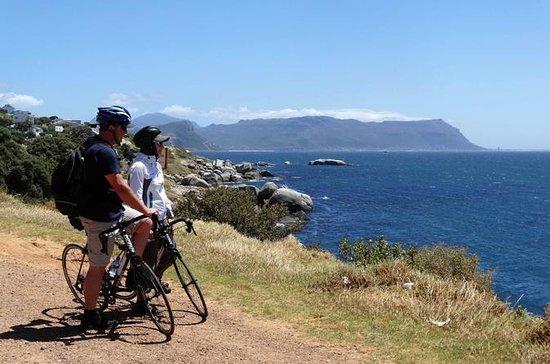 ケープタウンからのケープ半島ガイド付き自転車ツアー