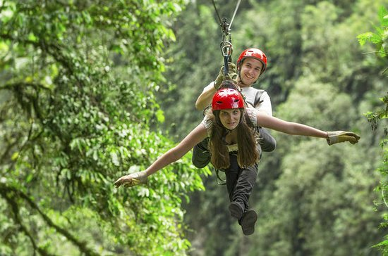 Congo Trail Canopy Tour from Playa ...