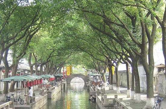 Private Day Trip to Tongli Water Town...