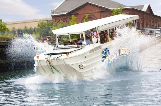 Gulf Coast Ducks Triple-Splash Duck...