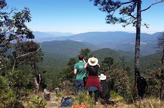 Sierra Norte Oaxaca Dagstur: San Isidro...