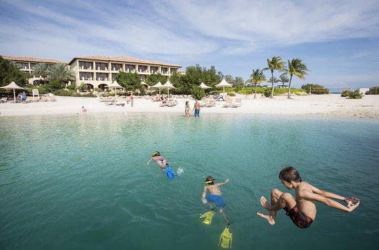 Curacao Speedboat Beach y Snorkel...