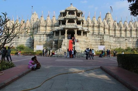 Private Day Trip to the Jain Temple...