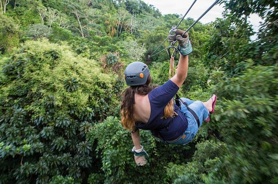 Zipline Adventure in Roatan