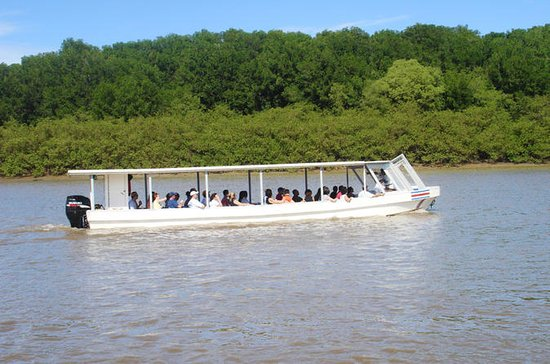 Palo Verde National Park Boat Tour...
