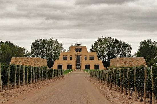Catena Zapata Small-Group Wine Tour...