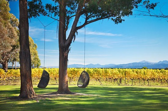Marlborough Wine Tour y Crucero desde...