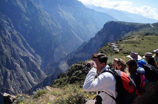 Excursión de día completo al Cañón...