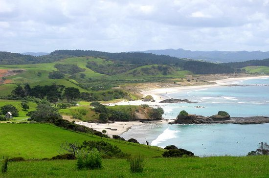 Private Full-Day Tour to Tawharanui Regional Park from Auckland