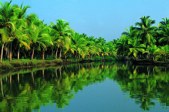 Alleppey Backwater Houseboat Tour...