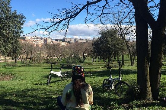 Elektro-Fahrradverleih in Madrid