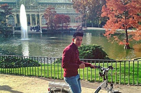 Madrid Retiro Park Elektrofahrrad-Tour