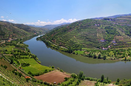 Porto Wine Tour Full Day