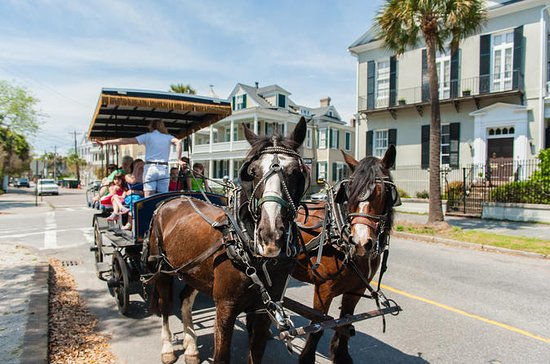 Charleston Carriage Ride and Guided...