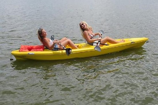 Paddle Board Rentals Ormond Beach