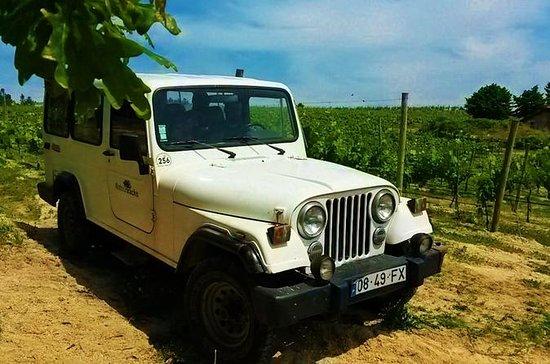 4x4 Wine Tour in the Portuguese Vinho...