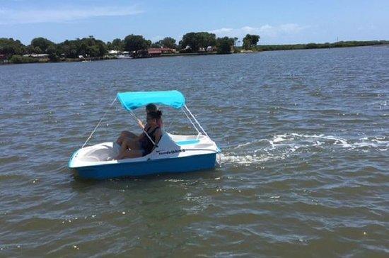 Dolphin Pedal Boat Rental in Daytona ...