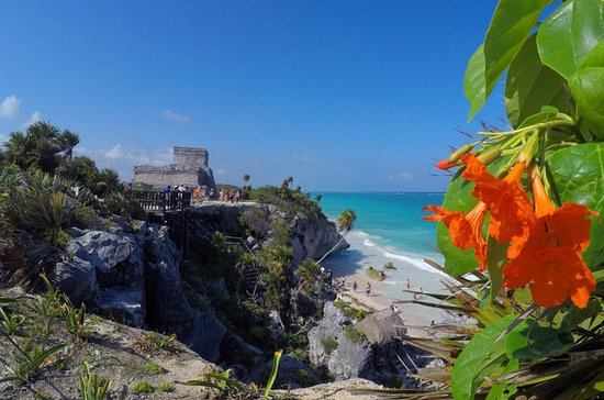 Tulum and Cenote Day Trip from Playa...