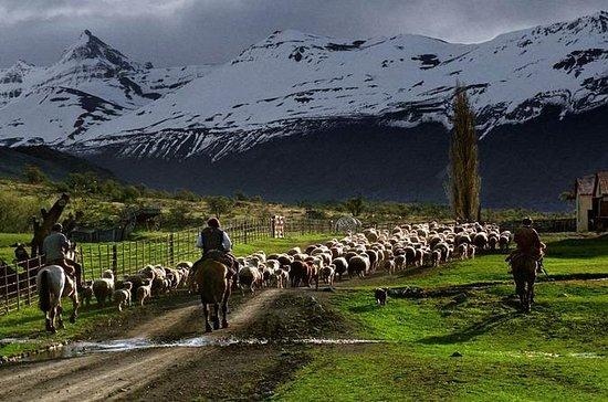 Tagesausflug nach Estancia Nibepo...