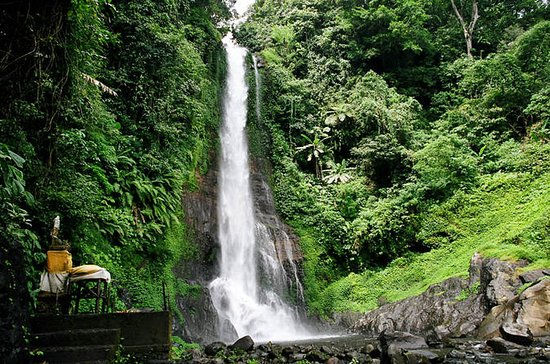 Private Tour: Natural Bali and...