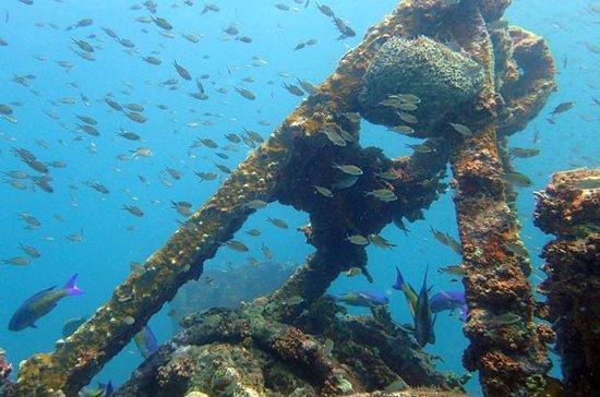 Grenada 2-Tank Scuba Dive for ...
