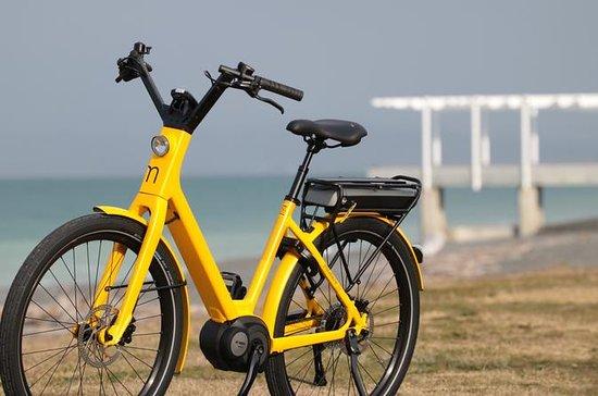 Visite guidée à vélo électrique de...