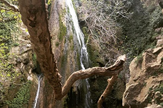 Herbs Olives and Waterfall Adventure...