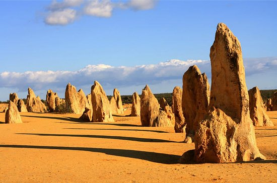 Pinnacles and Yanchep National Park...