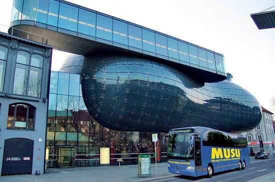 Kunsthaus Graz Museum Entrance Ticket