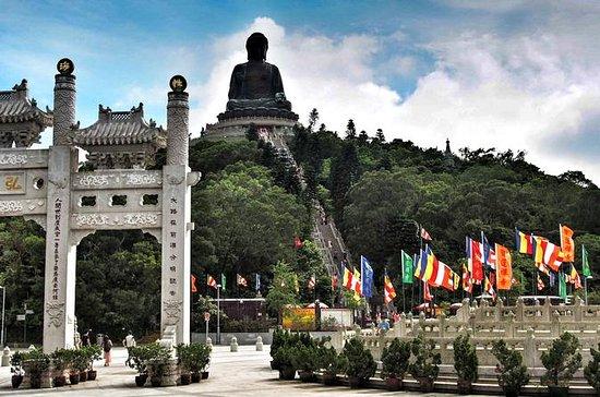 Lantau Island: Big Buddha, Tai O, Ngong Ping with Small Group