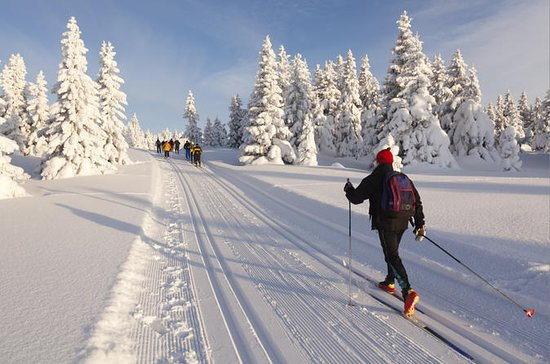 Lake Tahoe Cross Country Ski Rental