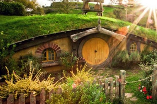 Waitomo Caves and Hobbiton Combo Day...