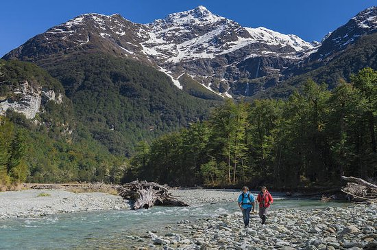 Routeburn Track Private Guided Walk...
