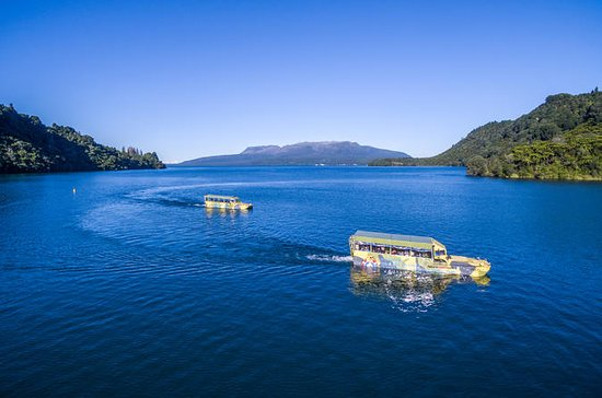 Tarawera and Lakes Sightseeing Tour...