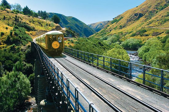 Dunedin Shore Excursion: Le chemin de...