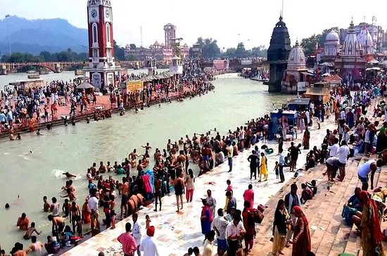 Haridwar, Rishikesh Private Tour from...