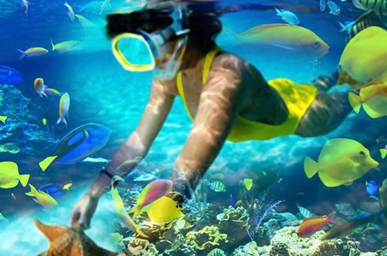 Reef Explorer from Punta Cana