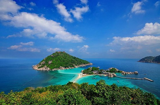 Diving Trip at Koh Tao from Koh Samui
