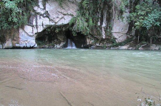 リオクロアジャングルリバーメデリンのプライベートツアー