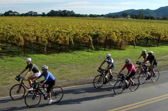 Full-Day Sonoma Valley Bike and Wine Tour