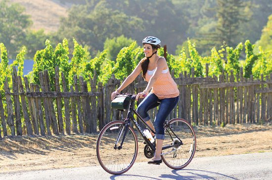 Half-Day Sonoma Valley Bike and Wine...