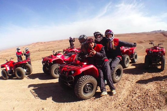 Quad Biking and Camel Ride Guided Day ...