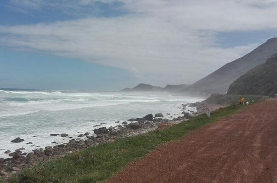Cape Peninsula Private Day Tour