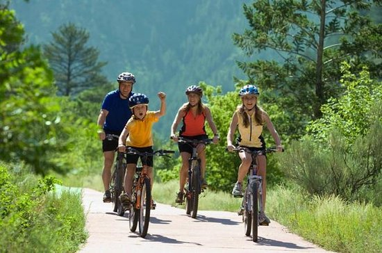 Full Day Bike Rental With Free...