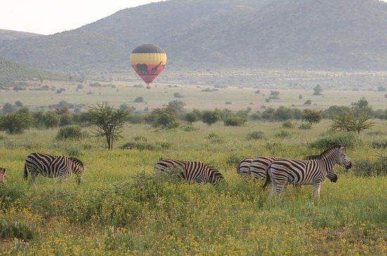 Hot Air Balloon Safari at Pilanesberg...